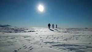 В Москве в конце марта установится морозная погода