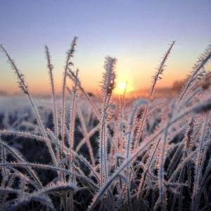 В выходные россиян ждут похолодание и первый снег