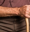 Обнаружен молекулярный механизм, препятствующий старению живых организмов