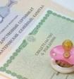 В Госдуме предложили замену материнскому капиталу