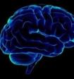 Изменения в головном мозге у пациентов с ВИЧ можно выявить с помощью МРТ