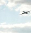Волейболиста ростом 2м 15 см  высадили с рейса российского лоукостера