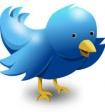 Twitter выпустит платную версию микроблогов
