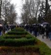 Участники несанкционированной акций в Краснодаре пожаловались на провокаторов