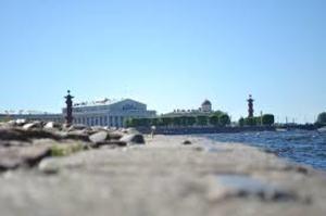Власти Петербурга указали, что не обязаны указывать альтернативы платным дорогам