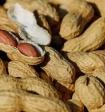 Арахис уменьшает риск сердечно-сосудистых заболеваний