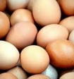 Эксперты рассказали, как цвет скорлупы влияет на качество яиц