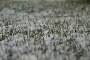 В Центральной России ожидают снег и гололедицу