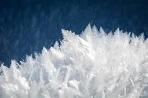 Калининград накрыло снегом