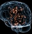 Ученые нашли дешевый способ улучшения памяти