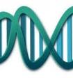Учёные разгадали загадку зарождения жизни