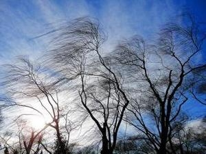 МЧС объявило штормовое предупреждение в Татарстане