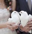 Гендиректор ВЦИОМ рассказал, в каком возрасте нынче принято жениться среди россиян