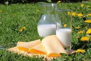 В белорусском молоке нашли следы антибиотиков от сифилиса