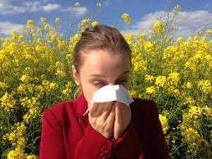 Учёные рассказали, как избавиться от аллергии