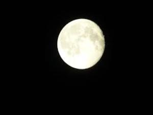 Уфологи рассказали, почему Луна - это космический корабль с инопланетянами
