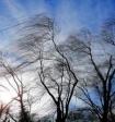 На Москву надвигается гроза со штормовым ветром