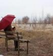 Учёные рассказали, кому из людей грозит одиночество