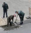 Дорогу в Саратове починили котиками и свиньями