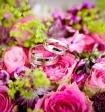 Краснодарский совет судей выяснил, кто оплатил свадьбу судейской дочери