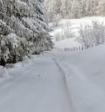 В Россию пришли метели и гололёд