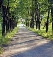 Впервые в России было отозвано право на дальневосточный гектар