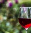 Глава Минздрава поведала о пользе алкоголя