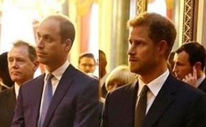 Принцы Уильям и Гарри снялись в