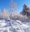 Синоптики рассказали об аномалиях, которые ждут россиян в январе