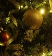 Новосибирский губернатор призвал сделать 31 декабря выходным для женщин