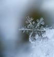 Метеоролог увидел признаки наступления новой климатической эпохи