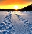 Бывший глава Кузбасса раскрыл тайну снежного человека