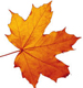 Самые «вкусные» новинки конца сентября