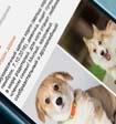 «Одноклассники» запустили продажу товаров через соцсеть