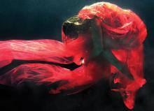 В Музее Москвы открылась выставка подводных фотографий Зены Холлоуэй, снятых на iPhone