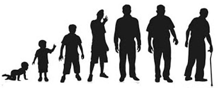 рост людей картинка
