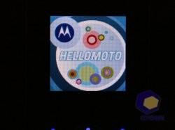 Фотографии Motorola W218