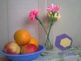 Фотографии с камеры Nokia Lumia_630