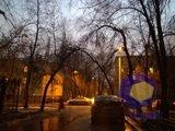 Фотографии с камеры Nokia Lumia_830