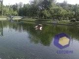 Фотографии с камеры Samsung U300